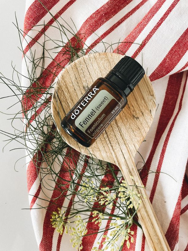 doTERRA Fennel Foeniculum vulgare Essential Oil on Wooden spoon. Spoon is resting on sprig of fennel on a red and white striped towel